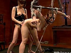 Hottie, Adorable math major takes a break from abstract alegbra to be brutally fucked by Maitresse Madeline!